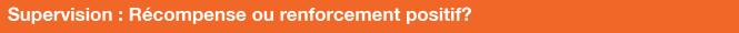 Supervision_ renforcement